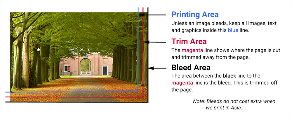 Bleed example to show page printing area, trim area, and bleed, prepress guide.