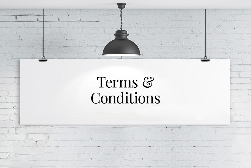 Purchase Terms and Conditions of our Website